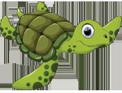 Ta Qali Pool Turtle Stage