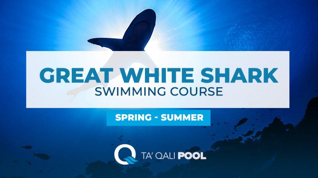 Sharks Swimming course Malta